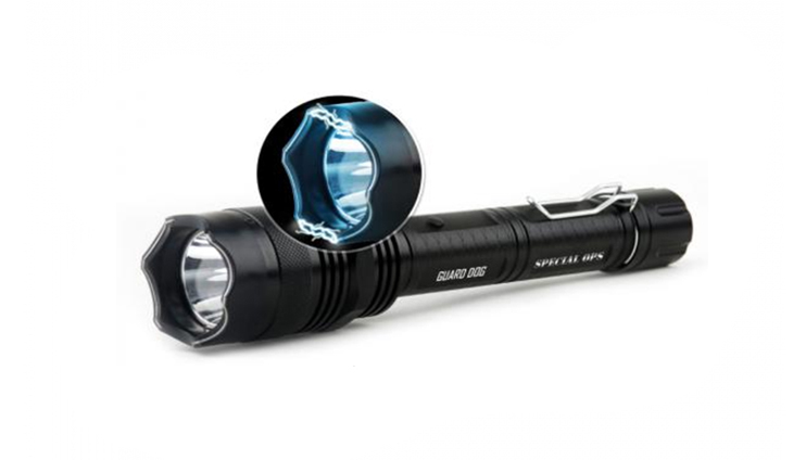 Flashlight Stun Guns